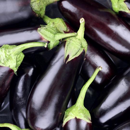 Sliced eggplants in sunflower oil